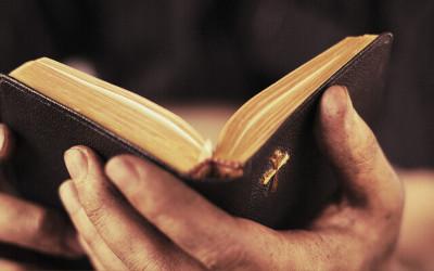 الشركة مع الله – دراسة الكلمة المقدسة – 14 حلقة
